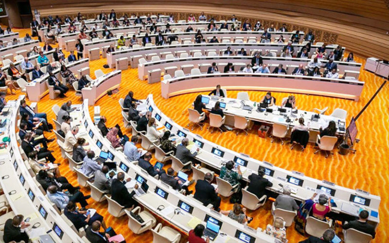 Intervention on AMR at the 72nd WHA